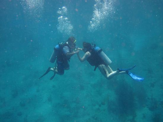 st thomas scuba diving adventure