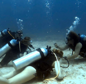scuba training st thomas